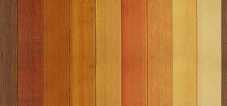 Comment choisir une essence de bois qui vous correspond ?